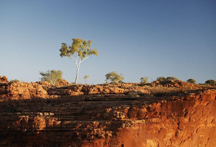 Bush and the City - A Sydney et dans l'Outback