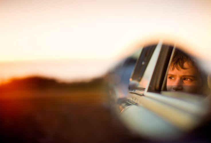Dingo de l'Australie - L'aventure en famille