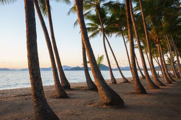 Palm Cove - Queensland - Australie