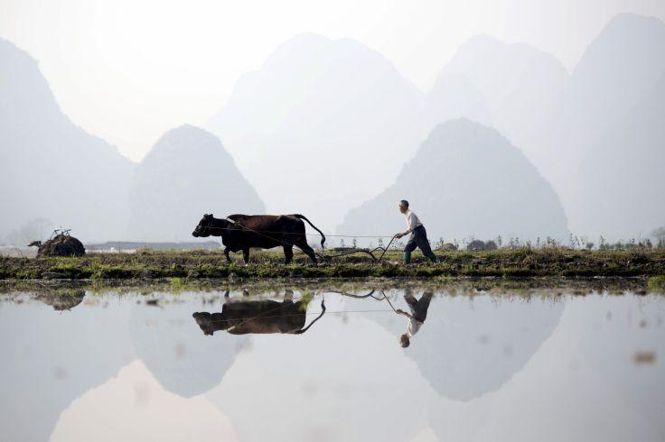 Pékin, Xi'an, Shanghai et la campagne - Premiers pas en Chine