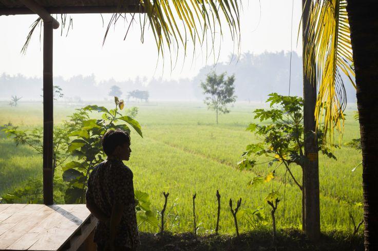100% Bali - Jungle, rizières & plages en douceur