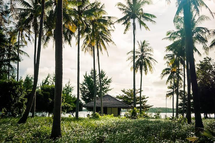 Temples, jungle et île secrète - Java en aparté