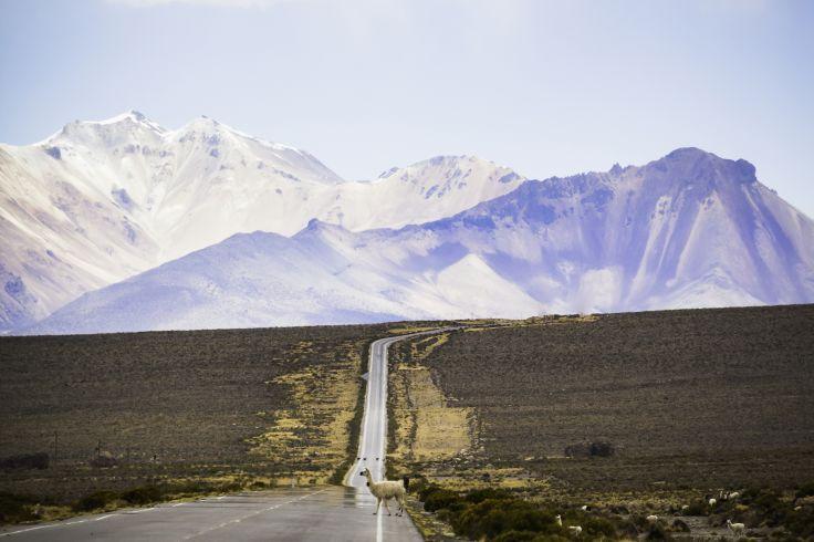 Pérou, Bolivie & Chili - Une épopée andine