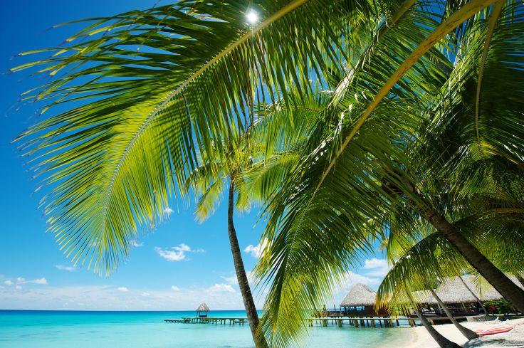 Tahiti, Moorea, Bora Bora & Rangiroa - Mots doux sur le motu
