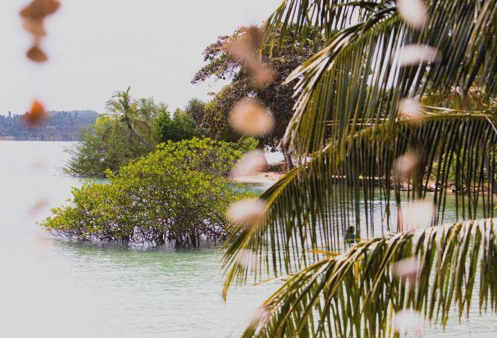 La Thaïlande pour voyage de noces - Des temples d'or à la plage